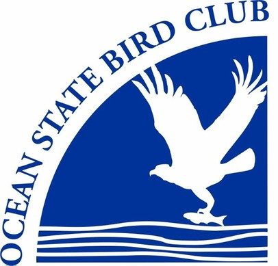 Logo for the Ocean State Bird Club